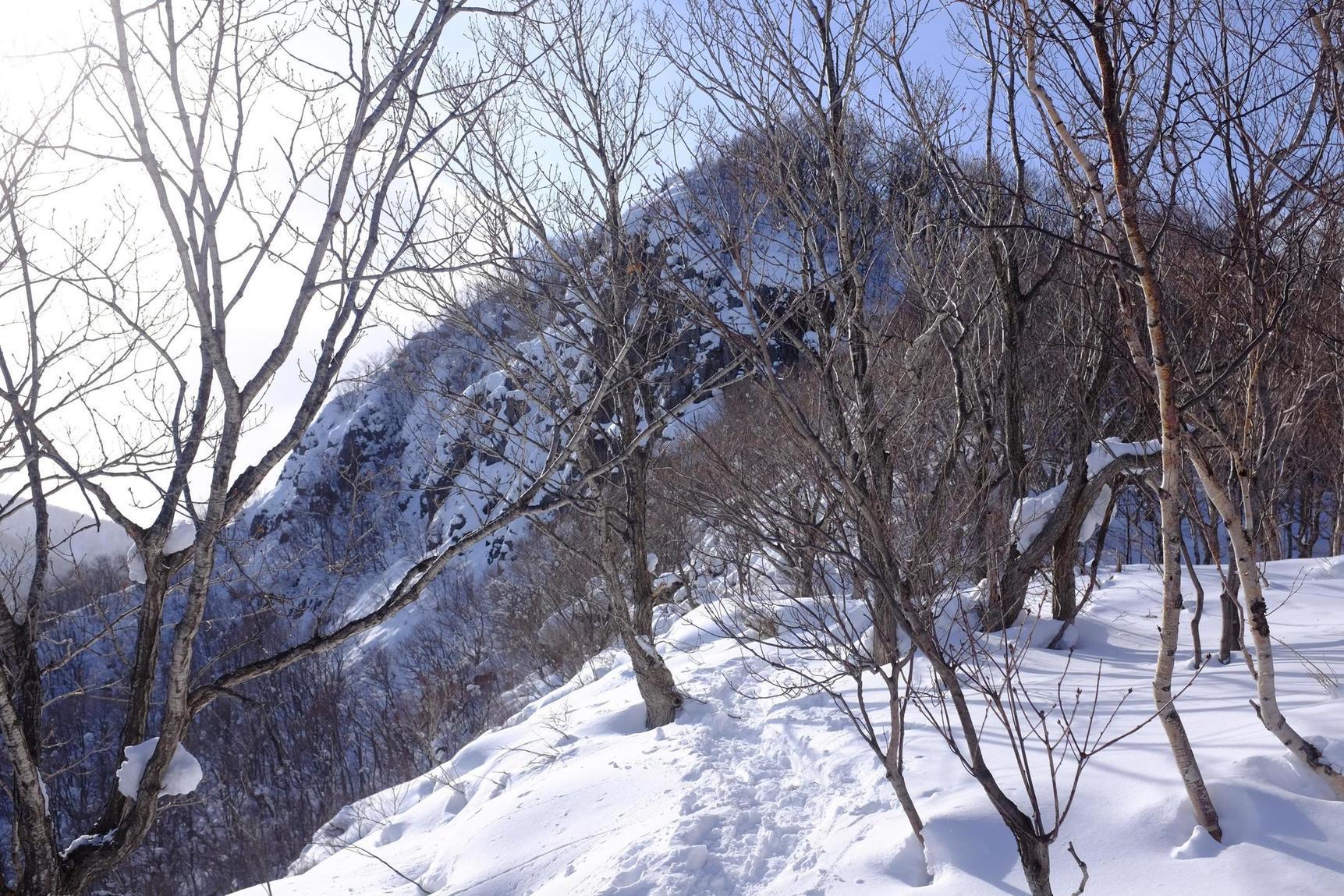 2019/1/10 銭函天狗山 01_d0233770_23091932.jpg