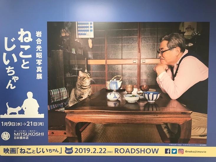 ねことじいちゃん*岩合光昭写真展_e0359481_20382623.jpg