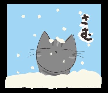 黒猫の宿命_a0333195_17335312.png