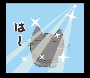 黒猫の宿命_a0333195_17342798.png