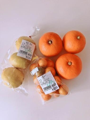 柑橘類のこと_c0237291_23163169.jpg