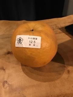 大きな梨頂きました。_d0096499_20034808.jpg