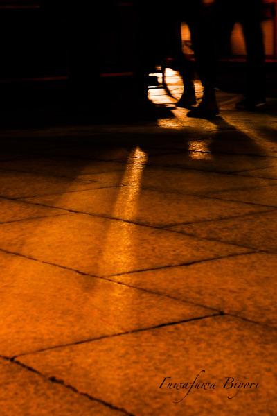 夜の光 **_d0344864_22530079.jpg