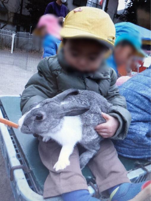 保育の様子♪  動物村にいってきました_c0293682_19371427.jpg