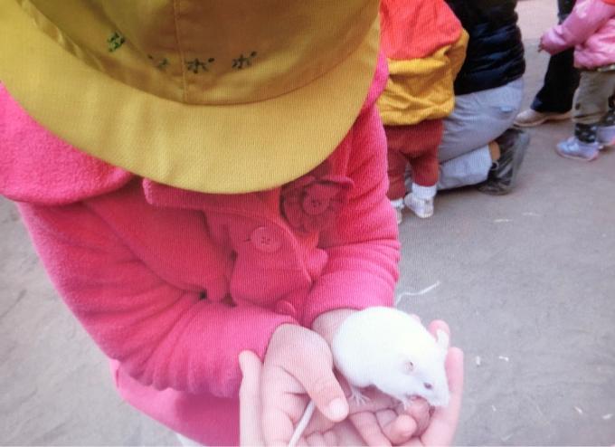 保育の様子♪  動物村にいってきました_c0293682_19372190.jpg