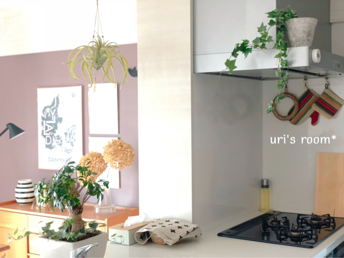 キッチンに最近加わりました、フェイクグリーン。_a0341288_21381594.jpg
