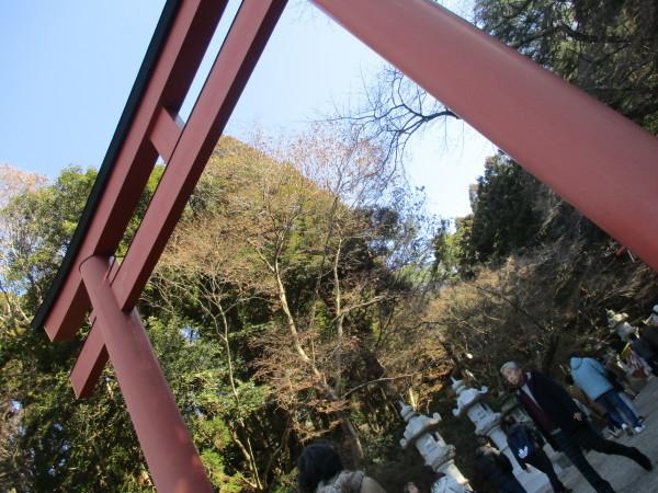 1月のイベント 香取神宮へ初詣_e0164724_14082684.jpg