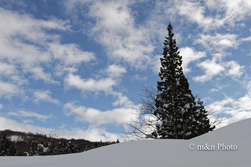 雪国へ 5_e0321360_23211514.jpg