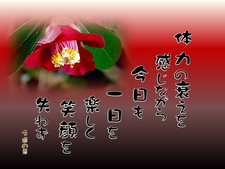f0214467_10063084.jpg