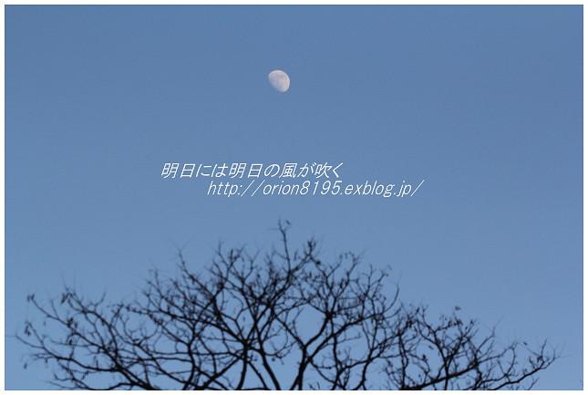 f0361079_19184998.jpg