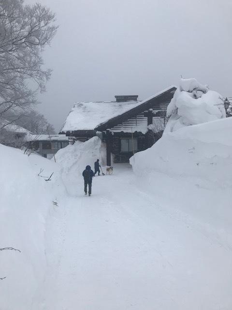 青森・雪!雪の八甲田ホテルへ_f0232994_13593896.jpg