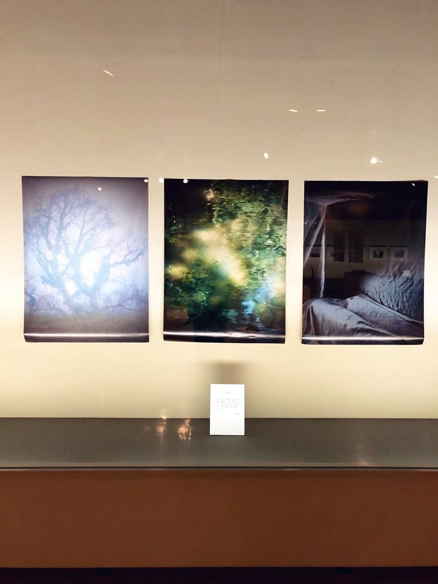 photoexhibition  代表展 vol.3  @鳥取県立博物館_e0115904_14564839.jpg