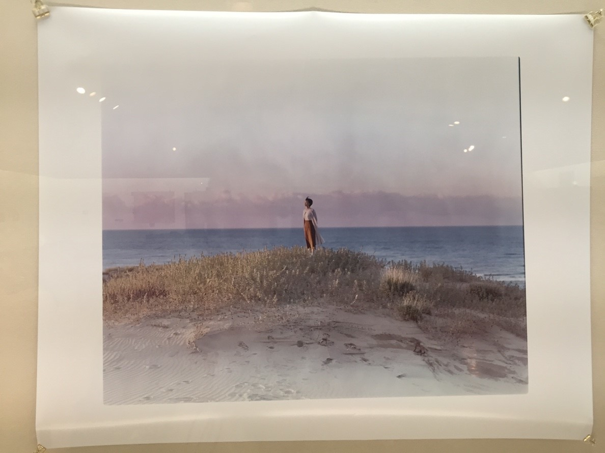 photoexhibition  代表展 vol.3  @鳥取県立博物館_e0115904_15063090.jpg
