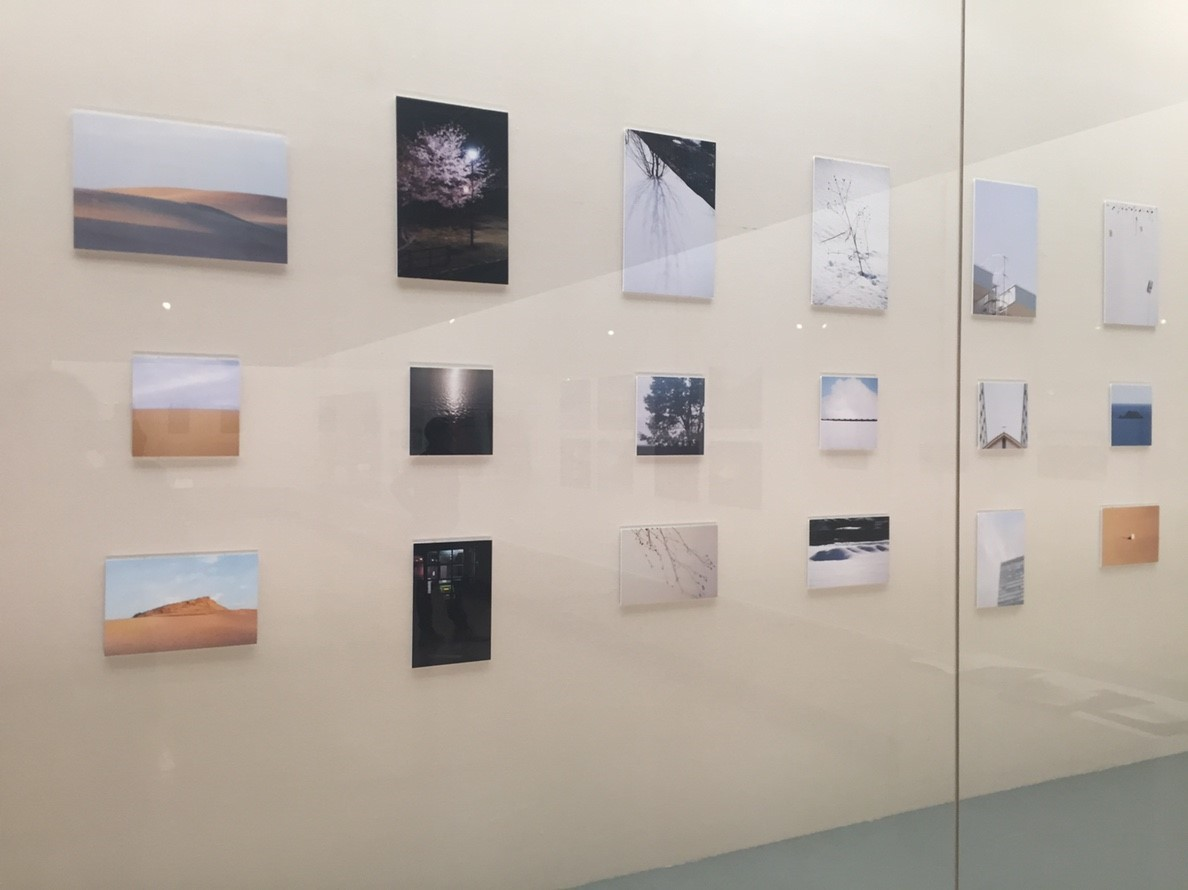 photoexhibition  代表展 vol.3  @鳥取県立博物館_e0115904_15304173.jpg
