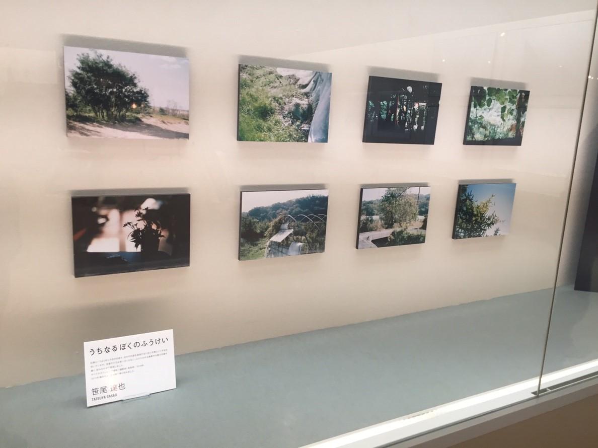 photoexhibition  代表展 vol.3  @鳥取県立博物館_e0115904_15310774.jpg