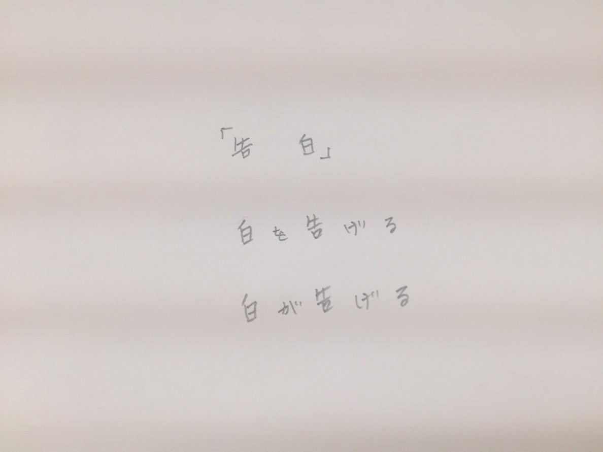 photoexhibition  代表展 vol.3  @鳥取県立博物館_e0115904_15354364.jpg