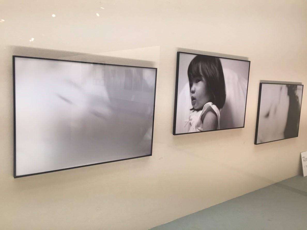 photoexhibition  代表展 vol.3  @鳥取県立博物館_e0115904_15375215.jpg