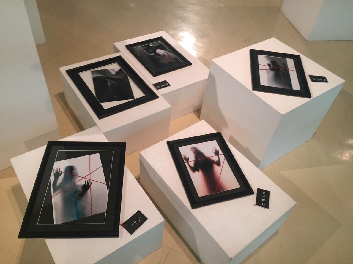 photoexhibition  代表展 vol.3  @鳥取県立博物館_e0115904_15391373.jpg
