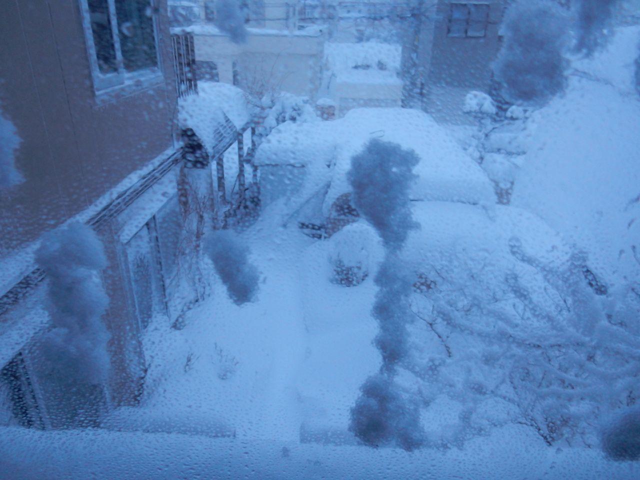 雪に埋まった_c0025115_21360424.jpg