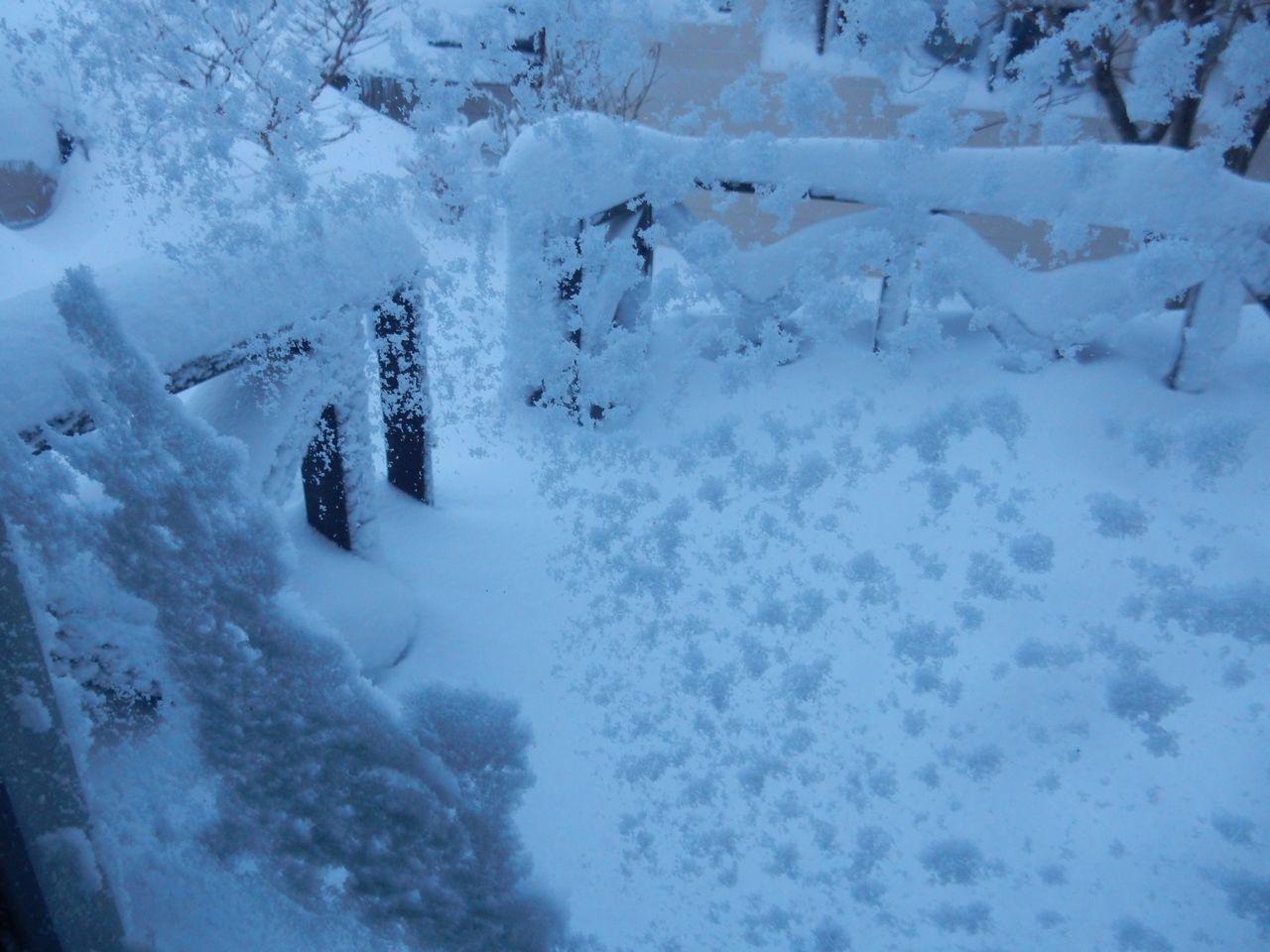 雪に埋まった_c0025115_21360881.jpg