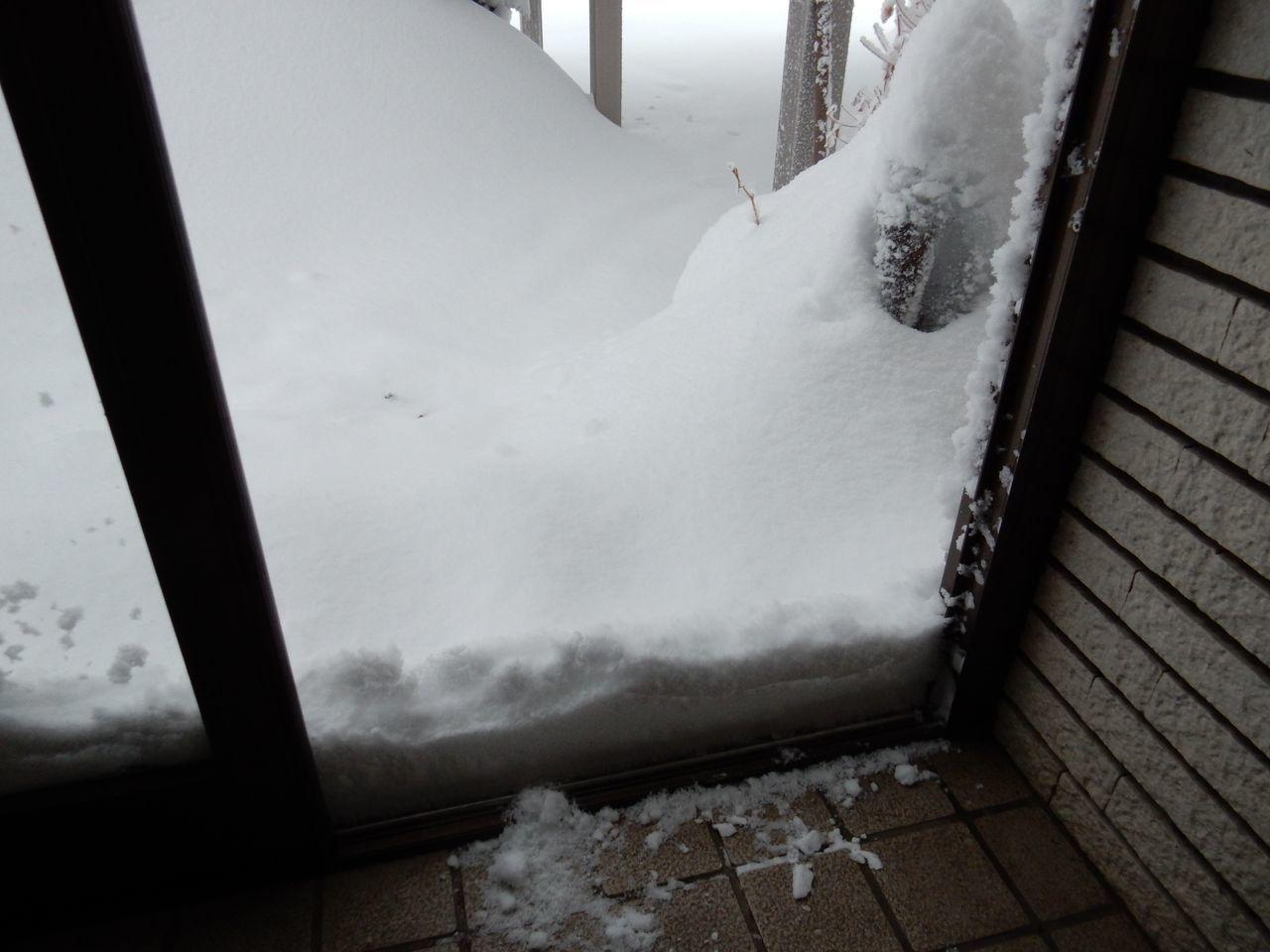 雪に埋まった_c0025115_21362576.jpg
