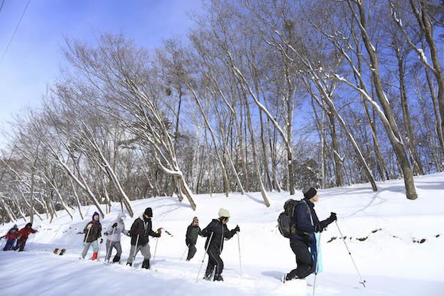 【もっと冬を楽しみたい】_b0174425_18170246.jpg
