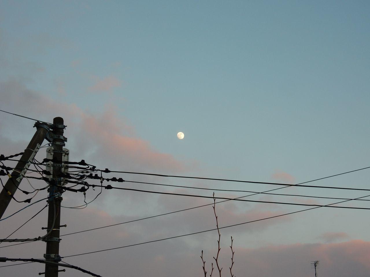 嵐の後は快晴でプラスの気温にもなった_c0025115_22453727.jpg
