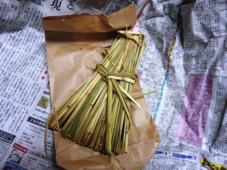 米作り7・わらづと納豆を作ろう_a0123836_15294487.jpg