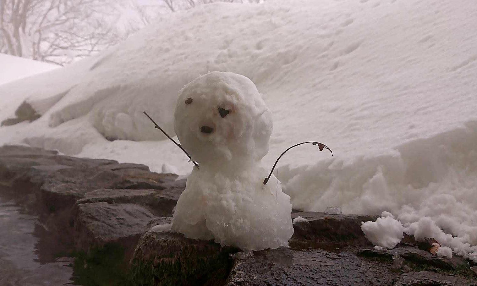 可愛い雪だるまです♪_c0151053_17473249.jpg