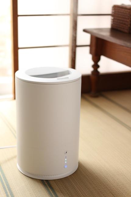 乾燥対策に、我が家にも加湿器を導入しました_f0354014_21505755.jpg