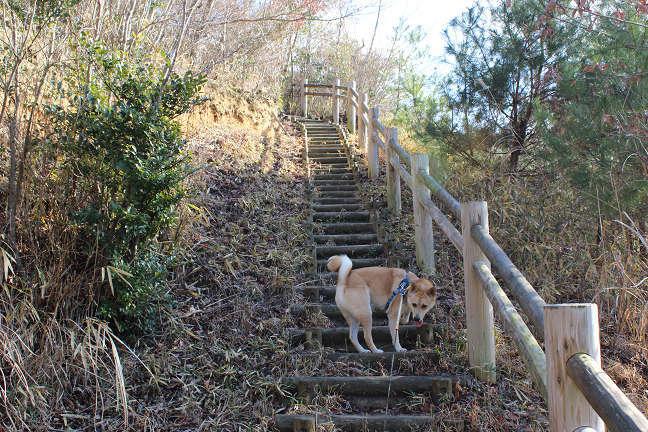 三木山森林公園へ_e0371017_22491109.jpg