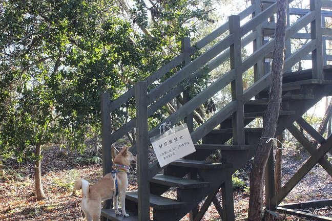 三木山森林公園へ_e0371017_22492483.jpg