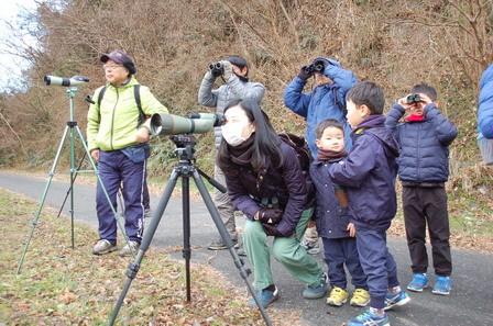 里山の鳥の観察_a0123836_16331761.jpg