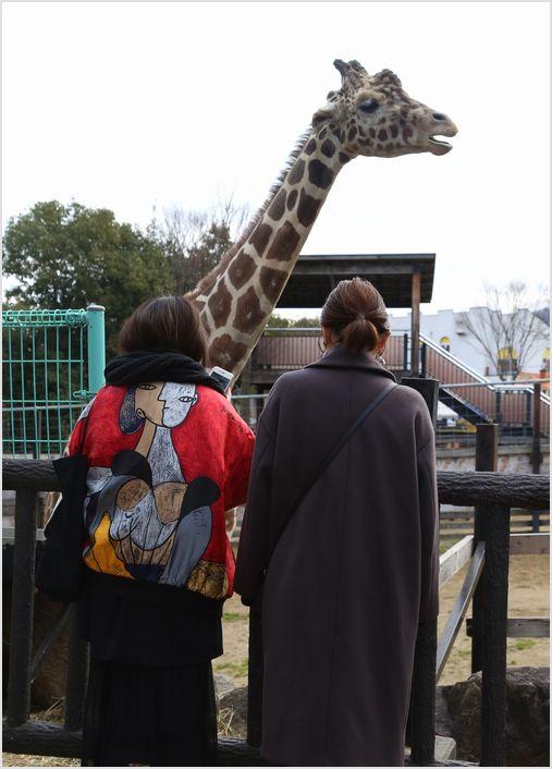 冬の動物園 ①_a0256349_9434073.jpg