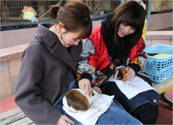 冬の動物園 ①_a0256349_9435466.jpg