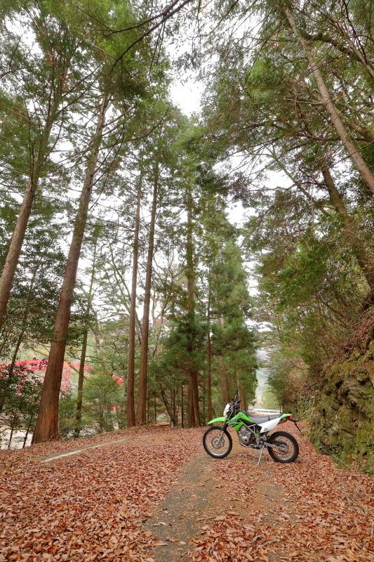 UFOラインの帰りは、長沢ダム経由で_a0077663_15582669.jpg