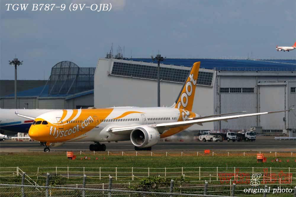 '19年 成田空港レポート ・・・ TGW/9V-OJB_f0352866_19333528.jpg