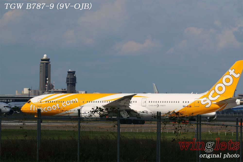 '19年 成田空港レポート ・・・ TGW/9V-OJB_f0352866_19334598.jpg