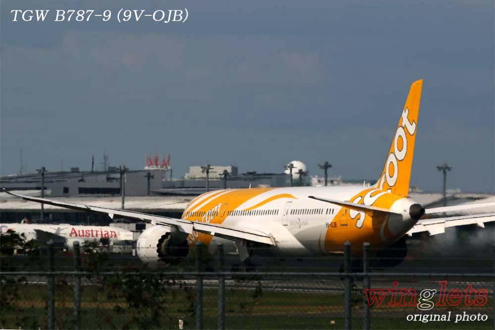 '19年 成田空港レポート ・・・ TGW/9V-OJB_f0352866_19335755.jpg