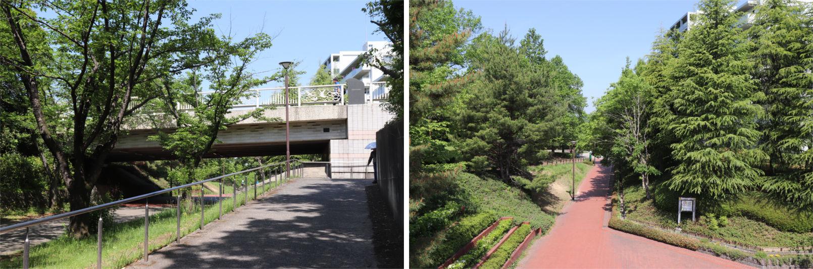 [多摩NTの橋ぜんぶ撮影PJ] No.31~35 南大沢駅周辺_a0332275_16470951.jpg