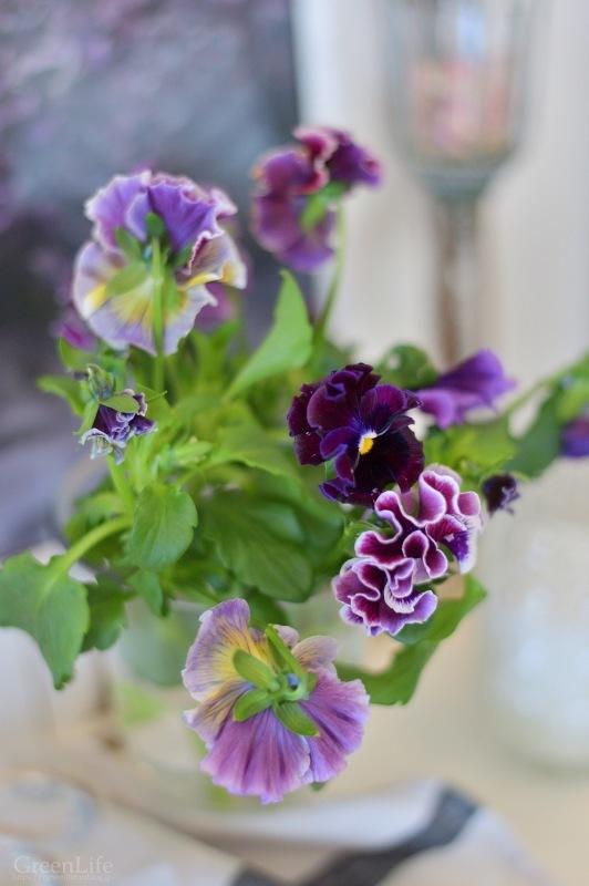 春のようなアトリエ_f0321522_09144296.jpg