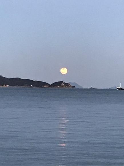 今日は満月です_b0325627_17525293.jpeg