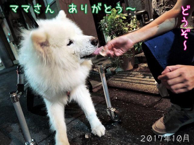 プレ・スーパームーン_c0062832_15595543.jpg