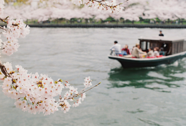 OFUNE CAMOME [Cherryblossom viewing on Tiny boat]_a0137142_00435791.jpg