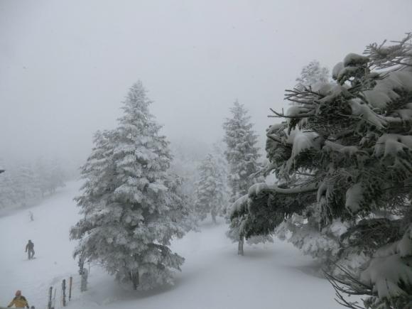 蔵王、雪景色_d0193569_08304113.jpg