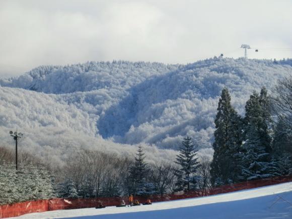 蔵王、雪景色_d0193569_08305095.jpg
