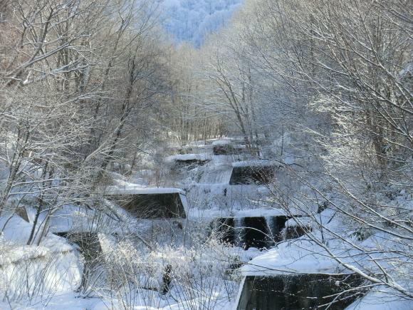 蔵王、雪景色_d0193569_08305569.jpg