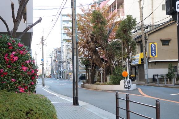 (番外編)新空堀通りへの道~鶴橋から歩いてみた~_c0001670_19130200.jpg