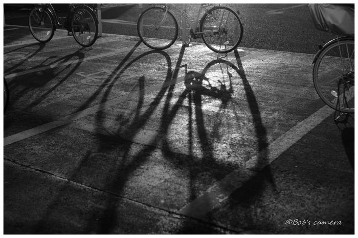 自転車_b0246079_05135776.jpg