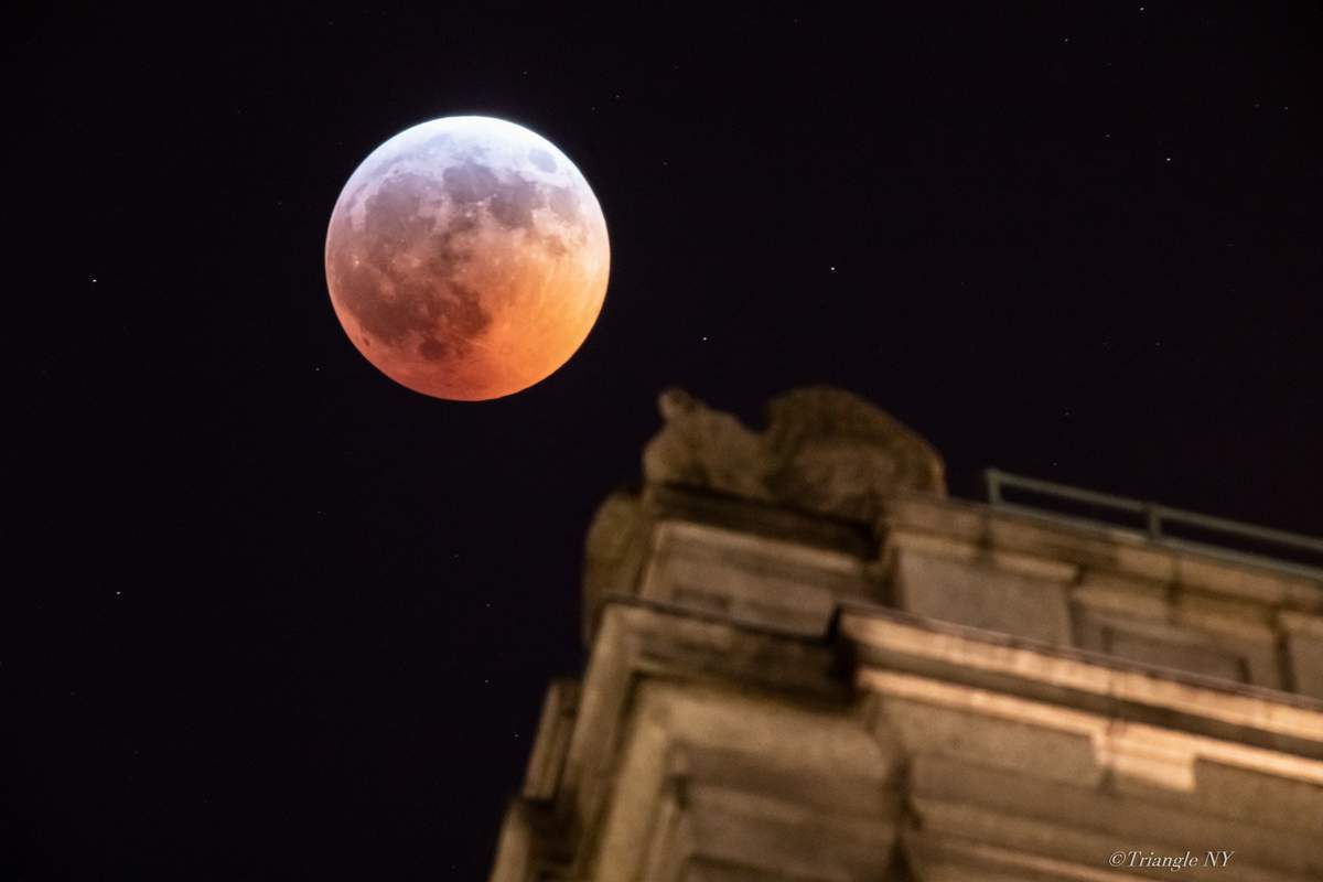 Super Blood Wolf Moon 2019 Ⅱ ーー記録ーー_a0274805_19253430.jpg